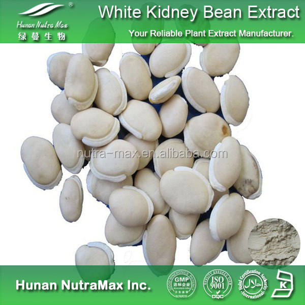 China Supplier Free Sample Herbal Ingredient Phaseolus vulgaris L White Kidney Bean Extract Powder