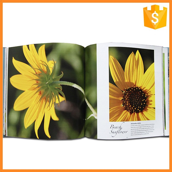 Professional Customized Products Painting Album for Industry Catalog