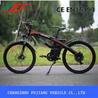 2015 Fujiang FJ-TDE01 adult electric motor road bike