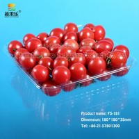 Factory Produce Hot Sale Transparent Blister Clear PET Fruit and Vegetable Plastic Tray FS-181