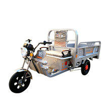Top Quality Supplier Promotional Highly Protective Large Cargo Usage Electric Tricycle