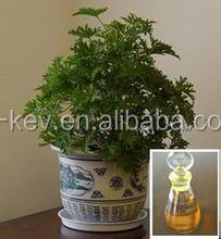 factory price food/cosmetic grade geranium essential oil