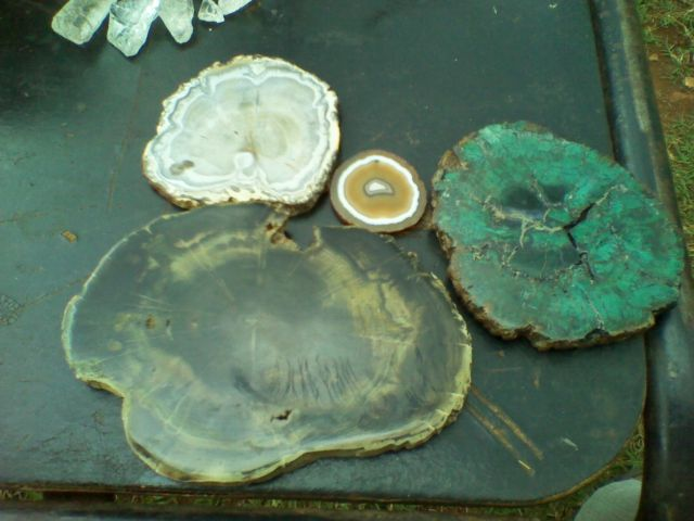 FOSSILISED WOOD, PETRIFIED WOOD