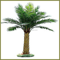 artificial outdoor palm trees for sale tissue culture date palm prices