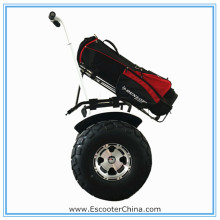 Green power high-class Cross-country vehicle 2 wheel self-balancing 350w electric scooter