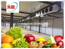 Professional cold storage consultants with great price