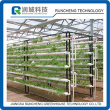 Vertical Hydroponic Growing System for Agricultural Greenhouse