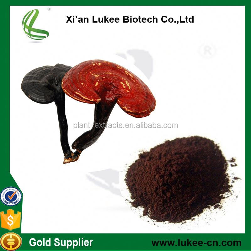 Supply Bulk Natural Raw Reishi Mushroom Powder Ganoderma Lucidum Extract