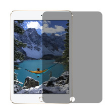 High Quality Tempered Glass Anti-spy Screen Protector For iPad Air / Pro / Mini Privacy Filter