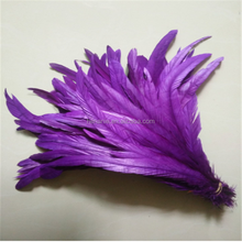 Wholesale Cheap dyed beautiful rooster tail feathers