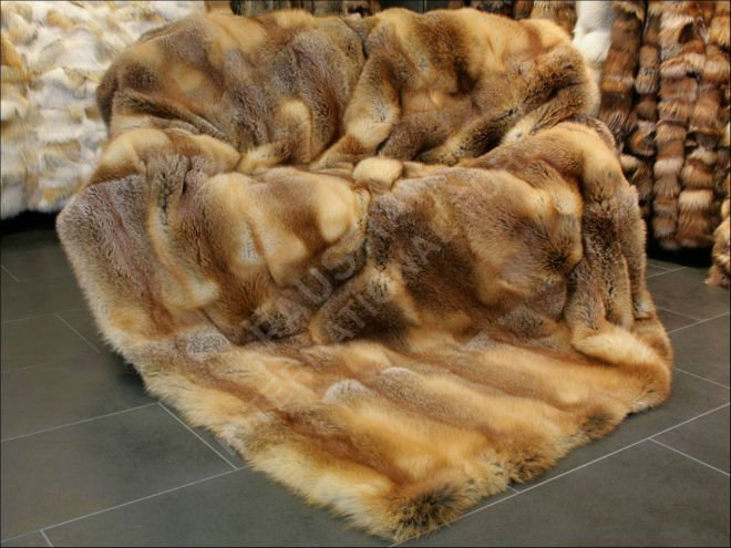 088 European Red fox fur throw
