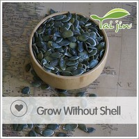 Dried bulk pumpkin seeds GWS for sale