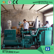 Low price high efficiency Bio gas generator set