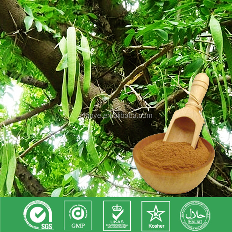 100% Natural extract Quillaia extract SAPONINS 90%