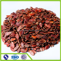 Chinese New Harvest Sweet Melon Seeds