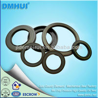 High Performance Spring Loaded Oil Seals with Double-Lip