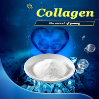 100% pure nature Beauty Marine Collagen/pure collagen powder/collagen hair treatment