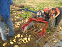 hot sale harvester agricultural machinery/grain potato harvester tools