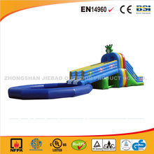 2016 cheap giant inflatable water slide /inflatable slide and pool for sales