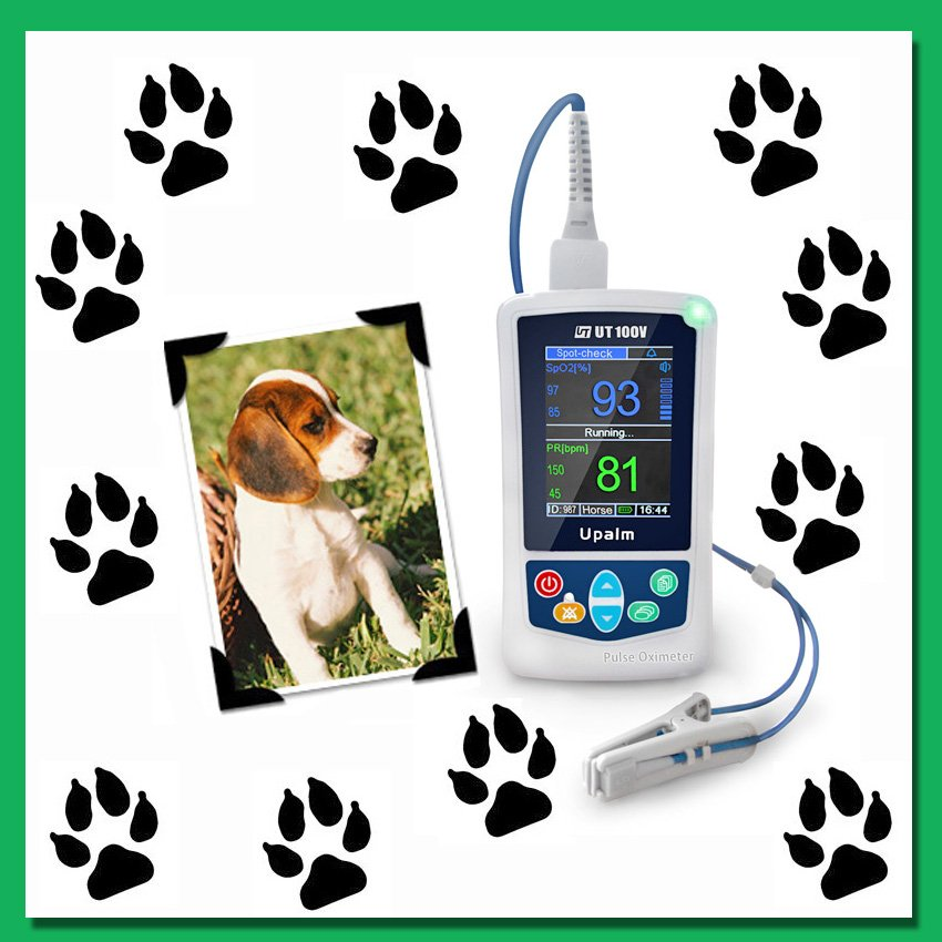 Heart Rate Monitor for Veterinary Use