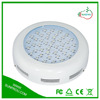 Fast Growing Vegetables Plant Led/Hydroponic Led Grow Light Online Hongkong UFO 80W LED Grow Light From Sunprou