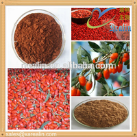 High quality health care products organic goji berry price /wolf berry extract