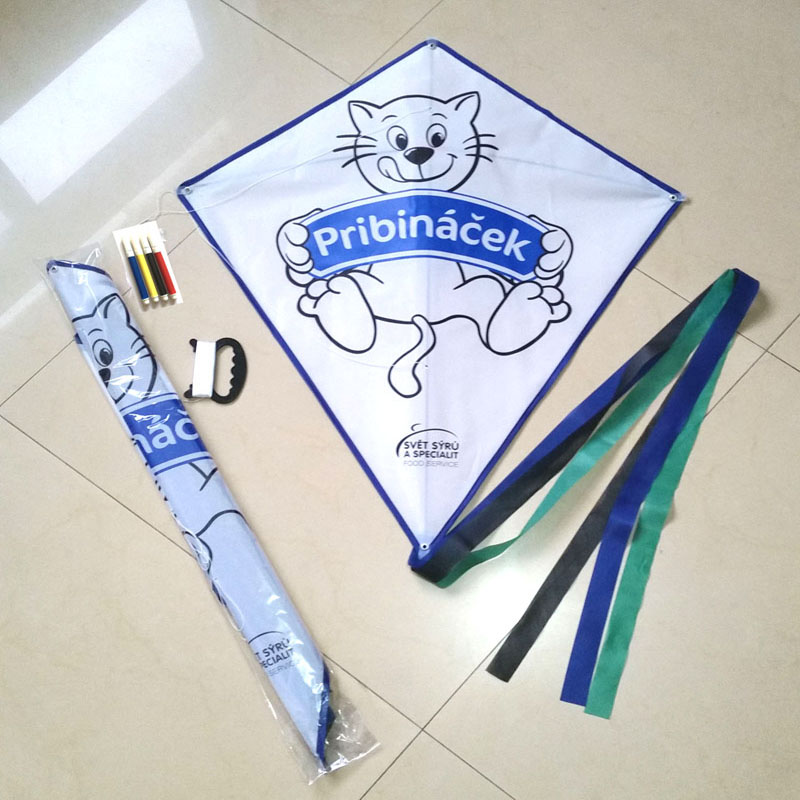Children Paint DIY Kite