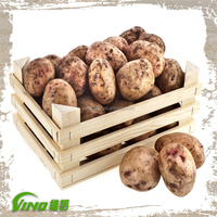 Wooden Crate for Vegetables, Wooden Crate for Fruit Vegetables, Wood Crate