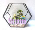 versatile clear glass terrarium pot for DIY microlandschaft