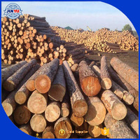 China export the pine wood logs for construction material