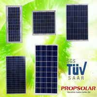 Hot sales propsolar low price solar panel 100 watt high quality for 12v battery