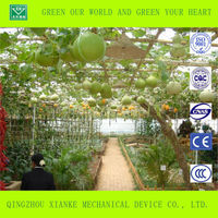 Commercial Large Scale Green House