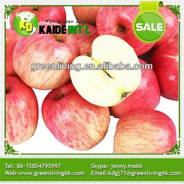 Natural Growth Chinese Red Fuji Apples Fruits