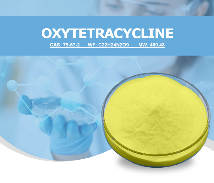Veterinary pharmaceutical feed grade oxytetracycline hcl 99% oxytetracycline base/hcl powder for pigeon