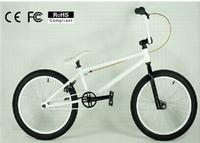 Hangzhou DOMLIN all kinds of price mini bmx freestyle/China Manufacturer 20 inch cheapest wholesale bmx bikes