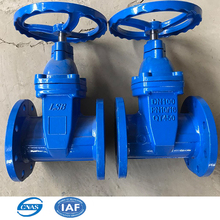 DIN DN500 rubber soft seat water cast iron gate valve with double flange