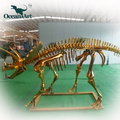 OA25824 life size Triceratops skeleton replica for sale