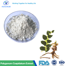 Pharmaceutical Polygonum Cuspidatum Plant Extract Resveratrol 98%/Giant Knotweed Extract 98% Resveratrol