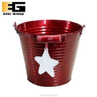 Red Pail For Gardening With Wire