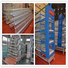 2017 wholesale laying hen cages with poultry chicken farm house design