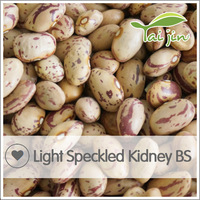 Chinese Light Speckled Kidney Bean Wholesale