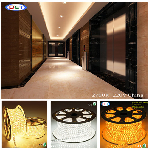 double line led strips for window border, shop window, store, building edge led strap lighting