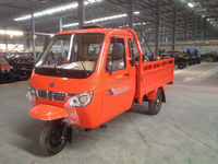 Enclosed 200cc Gasoline Tricycle Manufacture