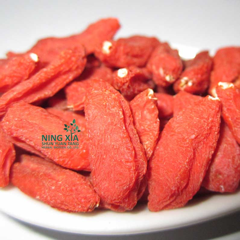 wholesale dried goji berries - china dried fruit factory
