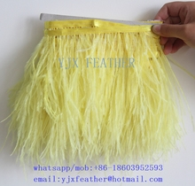 hot sale dyed Ostrich Feather Fringe Ostrich Feather Trim