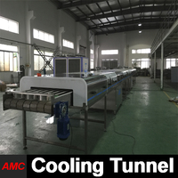 AMC Customized ice cream cold plate Cooling Tunnel Machine In China