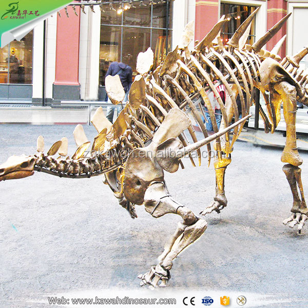 KAWAH Attractive Simulation Toy Dinosaur Skeleton For Dinosaur Exhibition