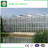 Excellent Material Agriculture Greenhouse Low Cost
