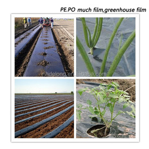 factory price plant of agriculture black ldpe hdpe plastic greenhouse film mulch film