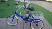 Folding tricycle/bike for adult